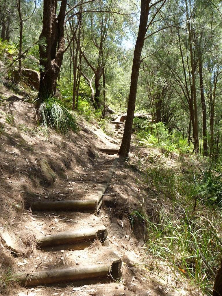 Steps and track behind Wondabyne Station