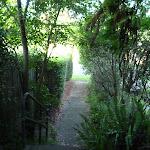 Longford St steps (382892)