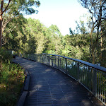 Boardwalk beside the Lane Cove River