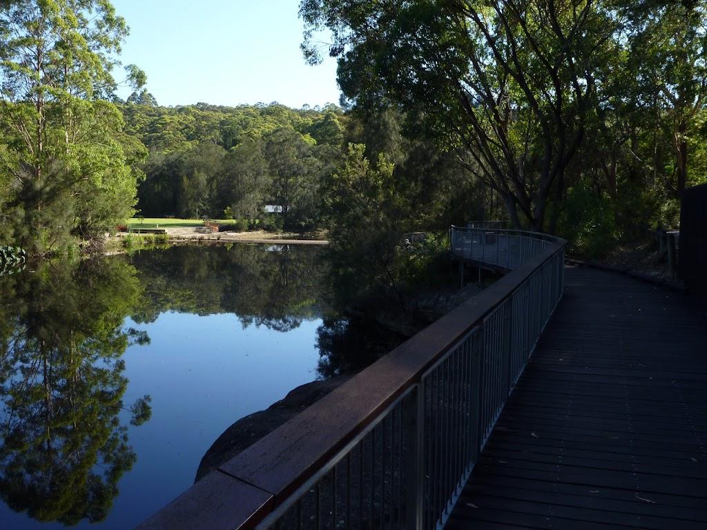 Walking alongside the Lane Cove River