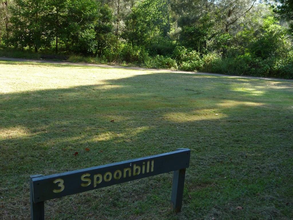 Spoonbill picnic area (383705)