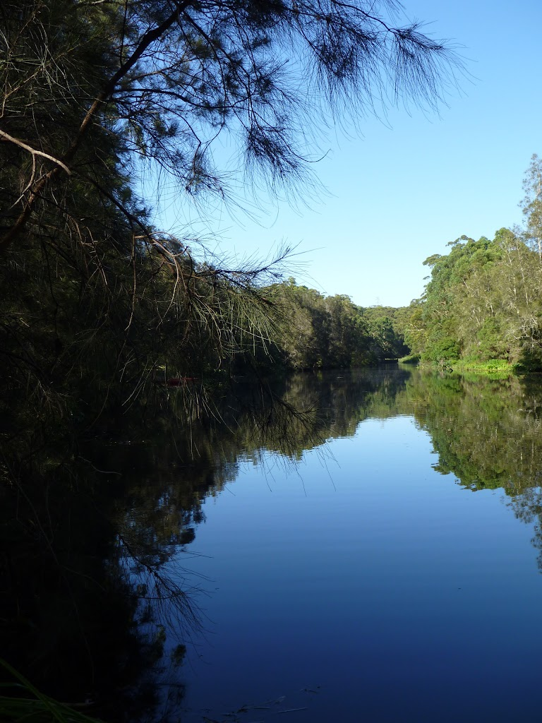 Lane Cove River near the Boat Shed
