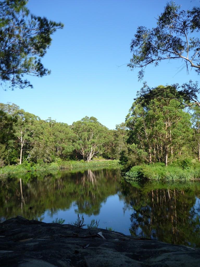 The Lane Cove River near Ironbarks Picnic Area