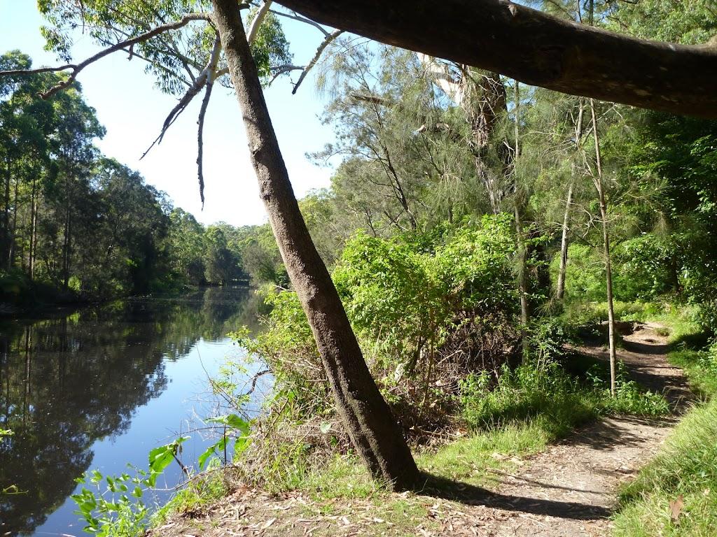 Lane Cove River south of Cottonwood Glen