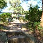 Steps near the Lane Cove River tourist park