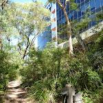 Corporate Park Scenic Trail (386000)