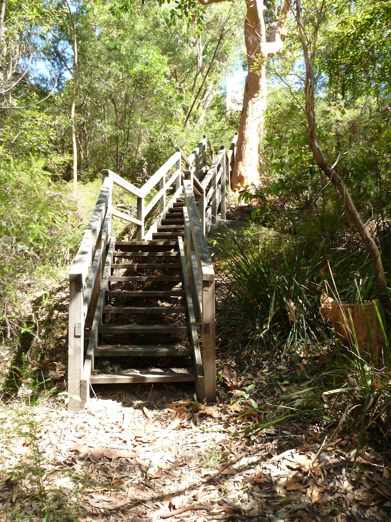 Riverside Corporate Park Scenic Trail steps