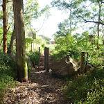 Track on Galgabba walk near Swansea (386906)