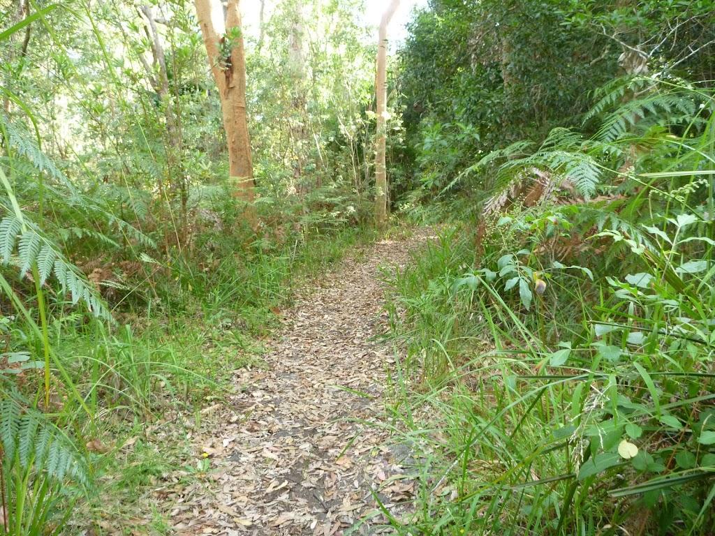 Track on the Galgabba Point walk