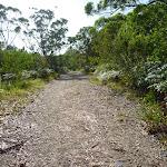 Wide track on the Galgabba walk near Swansea (387020)