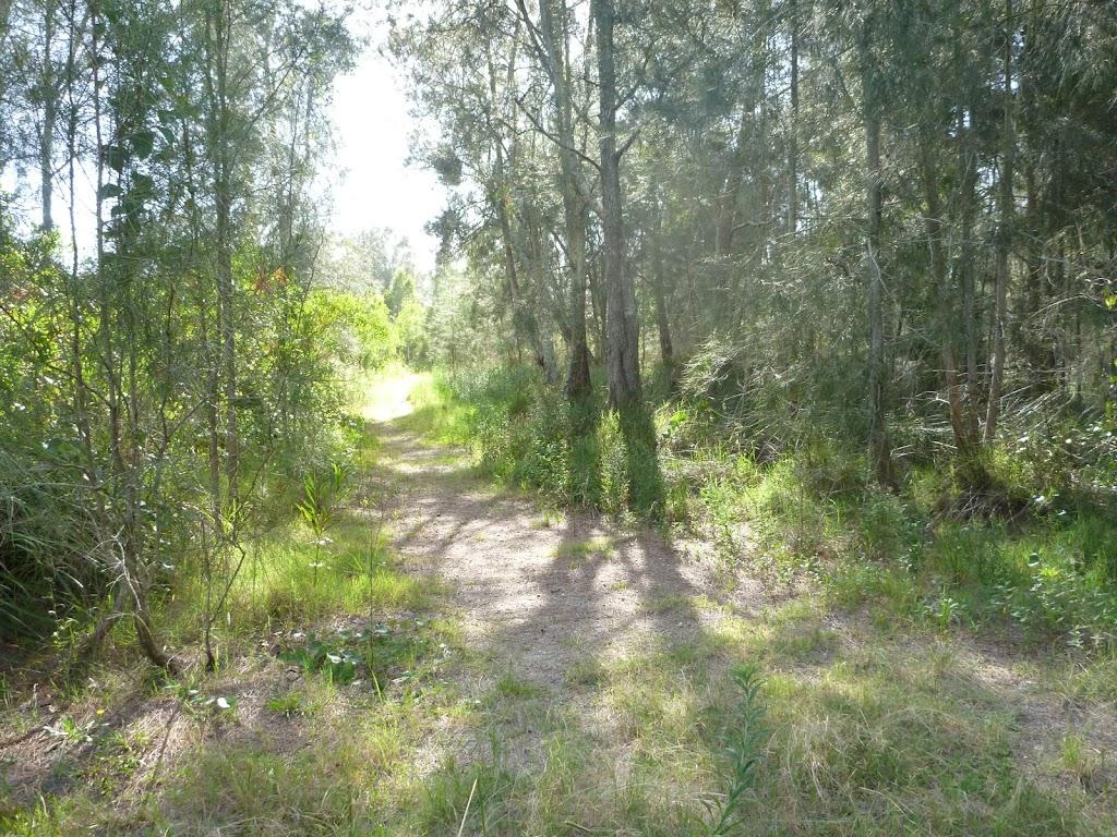 Track on the Galgabba Point Loop
