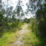 Track on Galgabba Point walk