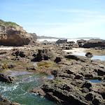 Rock pools at Caves Beach Caves (387374)