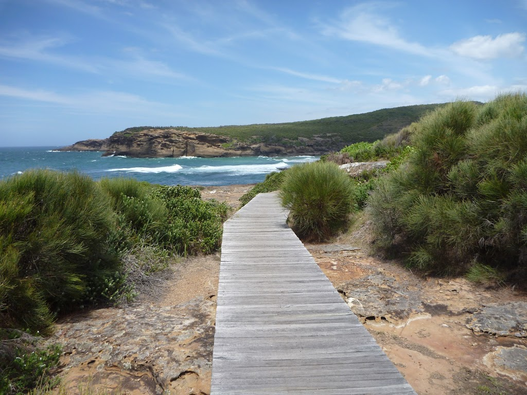 Timber boardwalk near Pinneys Beach in the Wallarah Pennisula (388040)