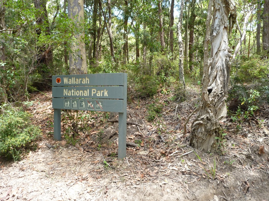 Wallarah National Park sign on the coastal track (388511)