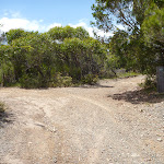 Trail intersection on the Wallarah Pennisula  (388532)