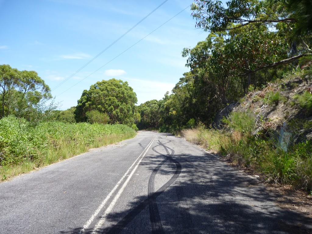 The old Pacific Hwy as part of the Wallarah Pennisula walk