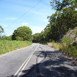 The old Pacific Hwy as part of the Wallarah Pennisula walk (388877)