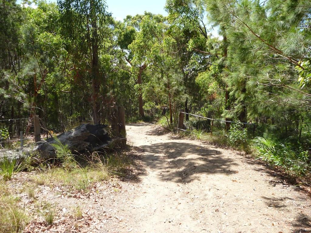 Trail near Murrays Beach on a sunny day
