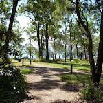 Landscaped ground at Murray's Beach (389246)