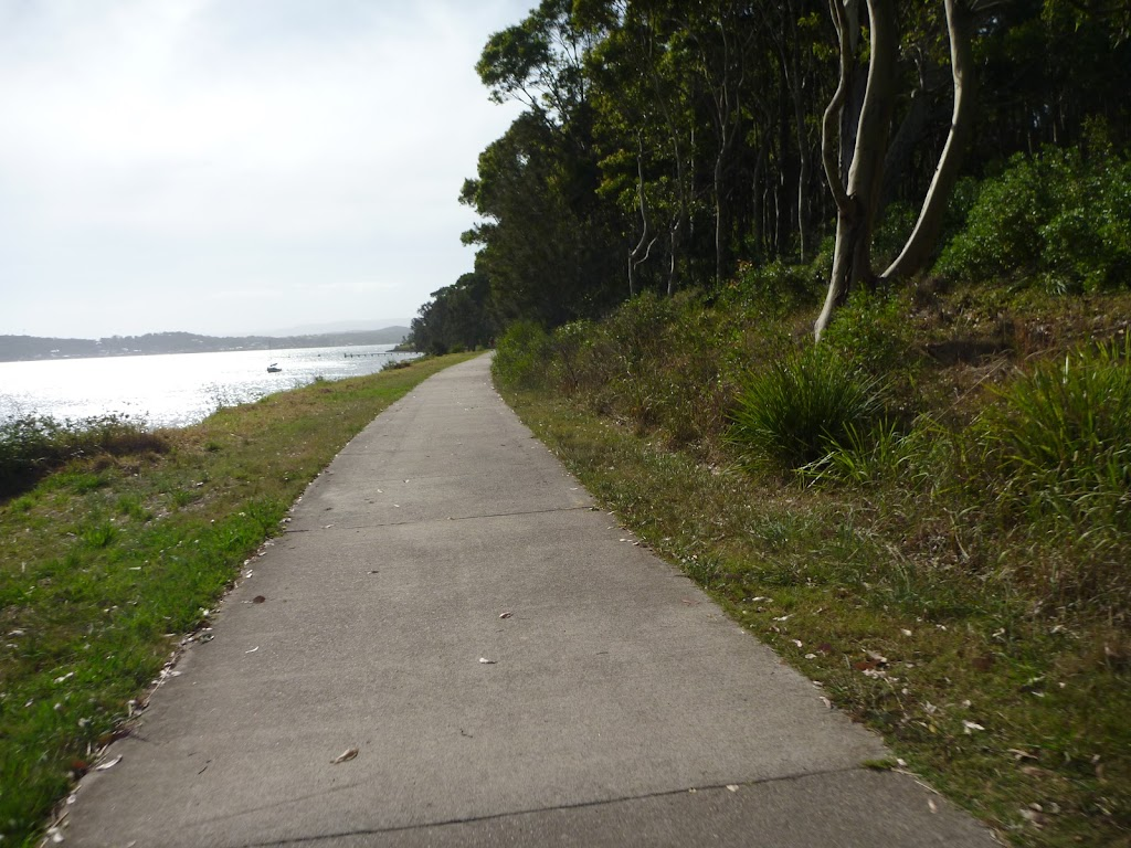 Sealed shared footpath next to Lake Macquarie in Green Point Reserve