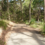 Sealed footpath in Green Point Reserve (389567)
