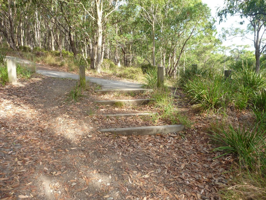 Stepped track in Green Point Reserve
