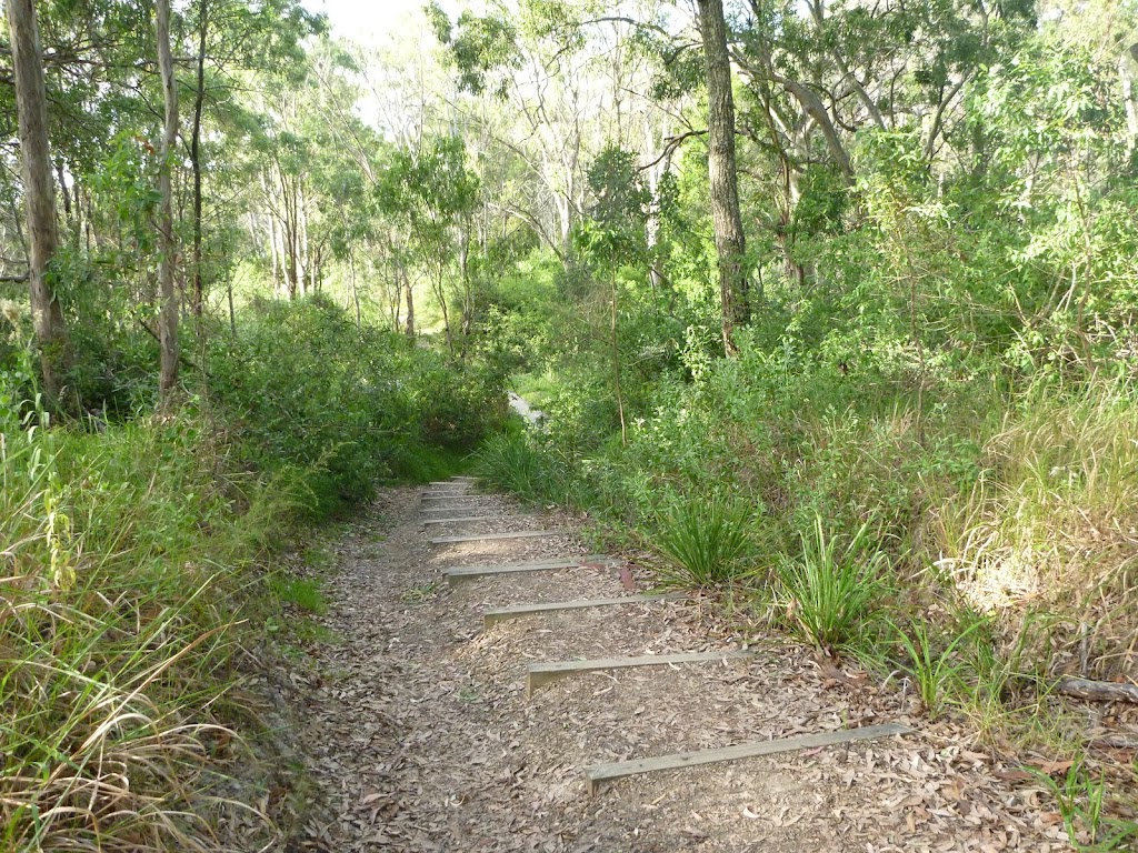Well maintained tracks in Green Point Foreshore Reserve