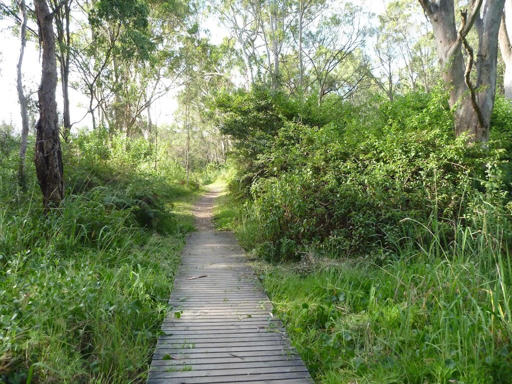Timber boardwalk near Green Point on Lake Macquarie