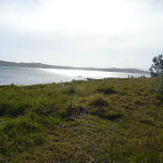 Green Point on Lake Macquarie (389714)