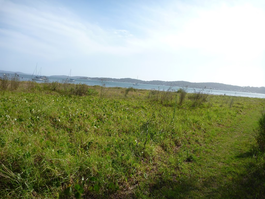 Walking near Green Point Lake Macquarie (389720)