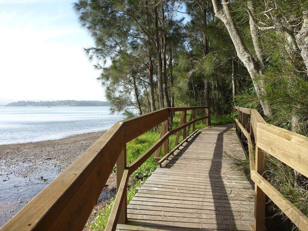 Boardwalk alongside Lake Macquarie