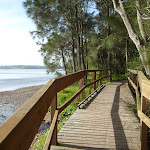 Boardwalk alongside Lake Macquarie (389768)