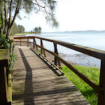Boardwalk with views of Lake Macquarie (389777)