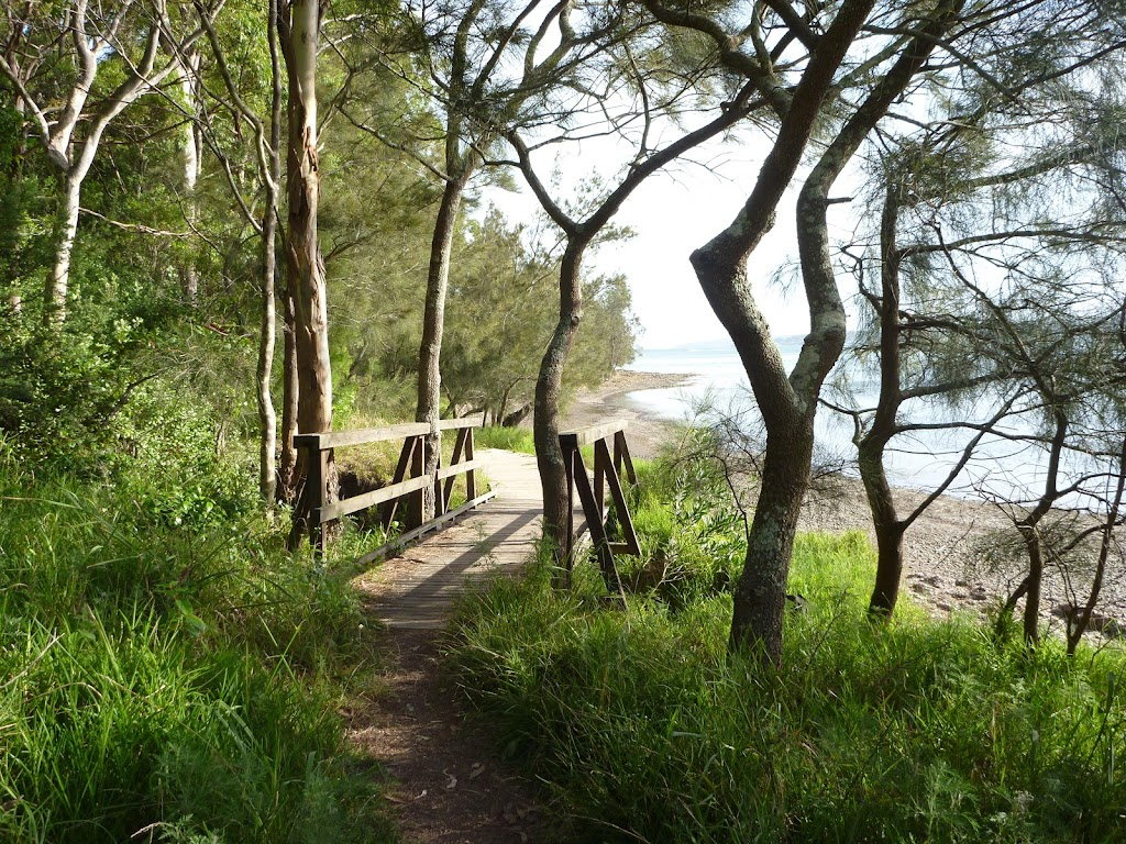 Timber bridge by Lake Macquarie in Green Point Reserve