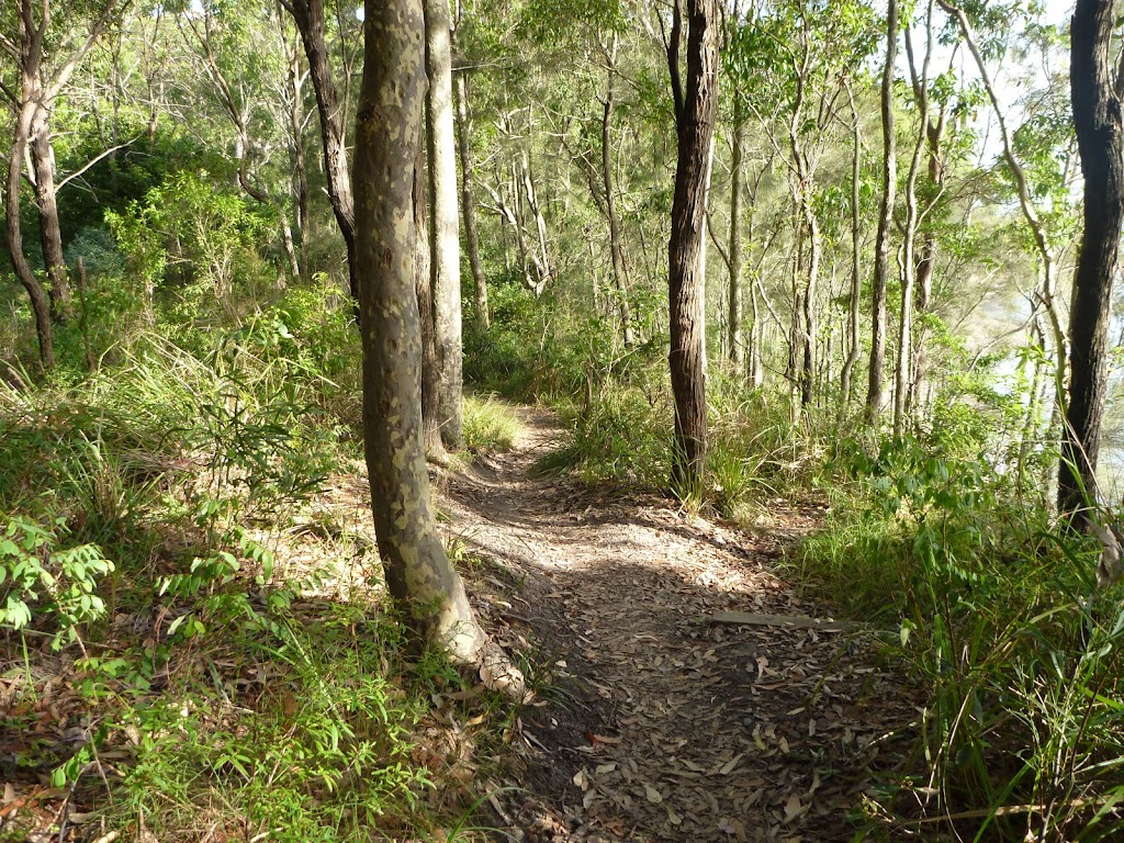 Track near Lake Macquarie in Green Point Reserve