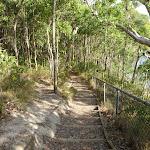 Bushwalking near Rocky-high view point