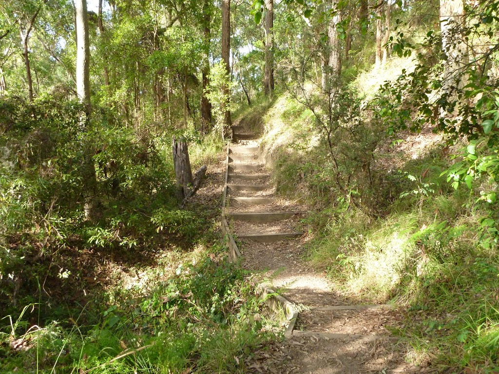 Timber steps and track near Rocky-high viewpoint by Lake Macquarie