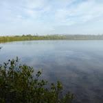 Still water over Belmont Lagoon (390188)
