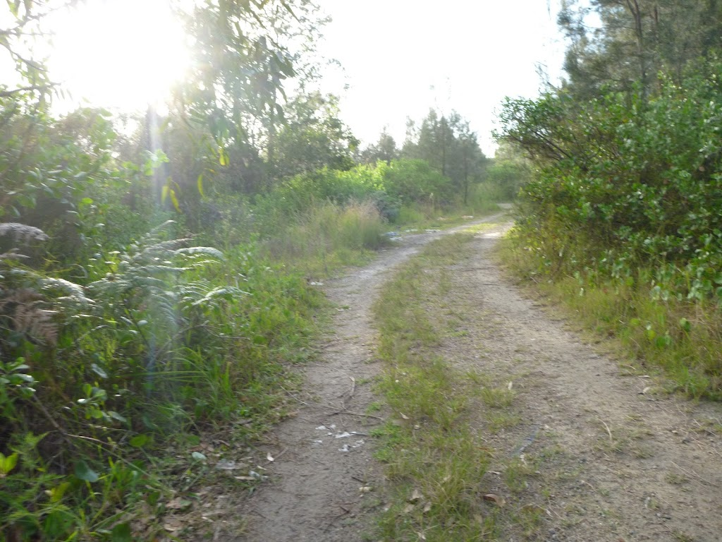 Trail on the spit in Belmont Lagoon