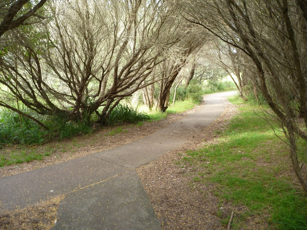 Foot path on the Owens Walkway near Cain St in Redhead
