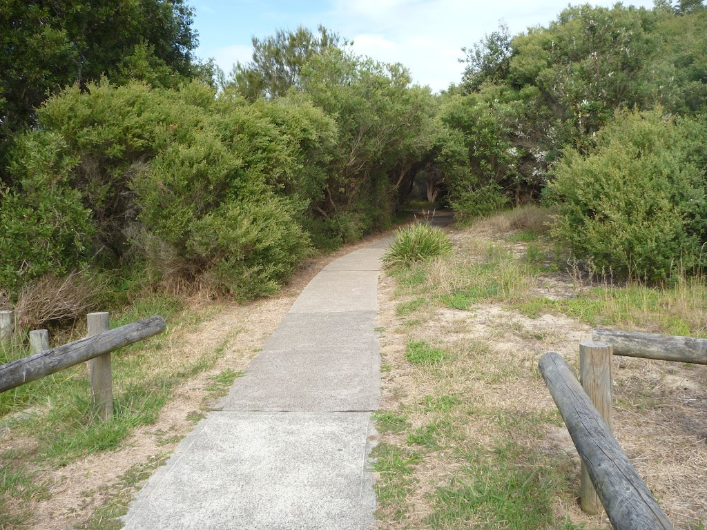 Sealed foot path on the Owens Walkway in Redhead