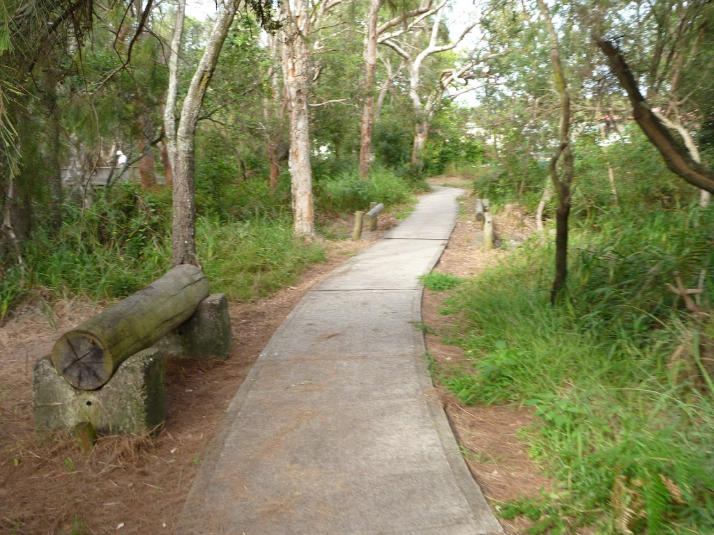 Footpath on the Owens Walkway in Redhead