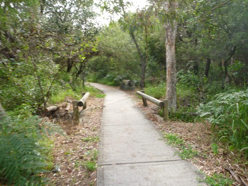 Footpath near the Owens Creek Viewpoint in Redhead