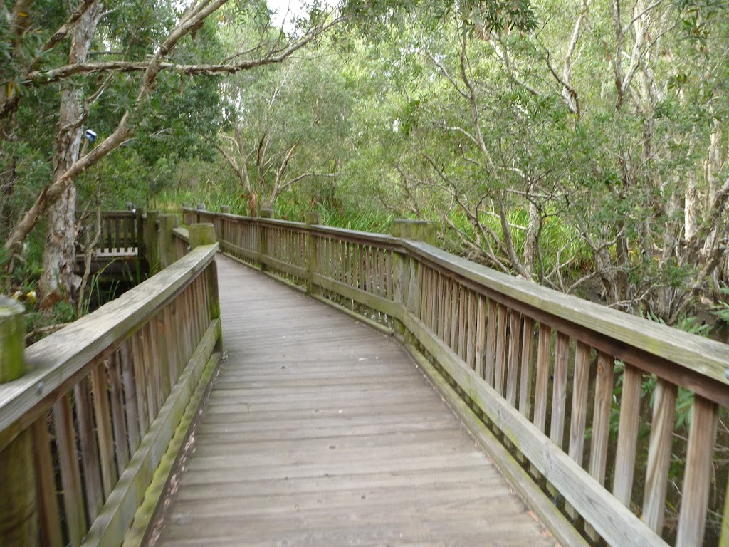 Elevated timber bridge over Owens Creek on the Owens Walkway in Redhead