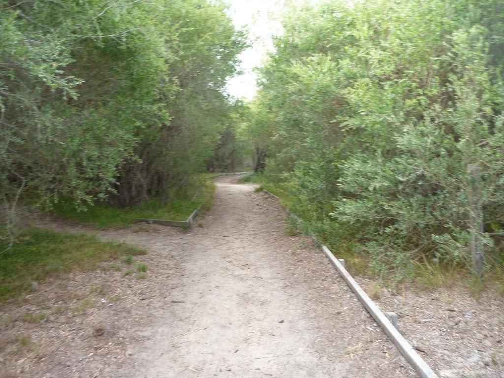 Track near the Owens Walkway in Redhead