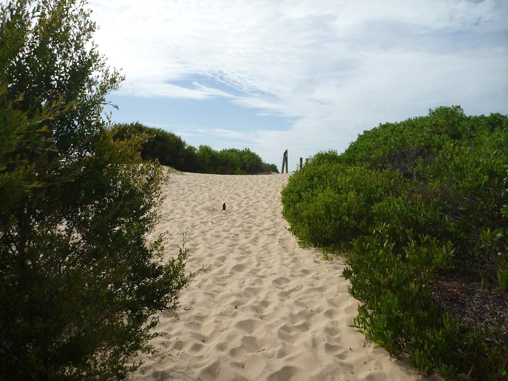 Sandy track near the Redhead Beach