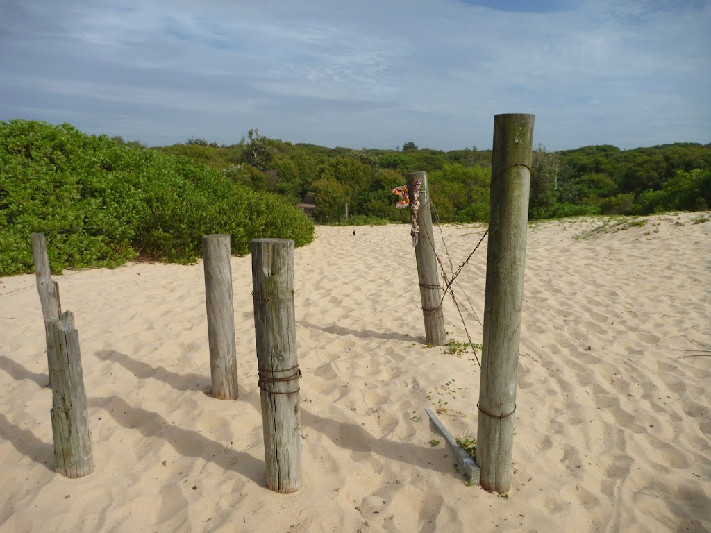 Timber post on the beach at Redhead