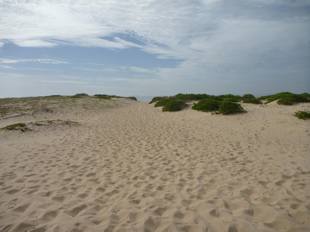 Uphill sandy track away from Redhead Beach