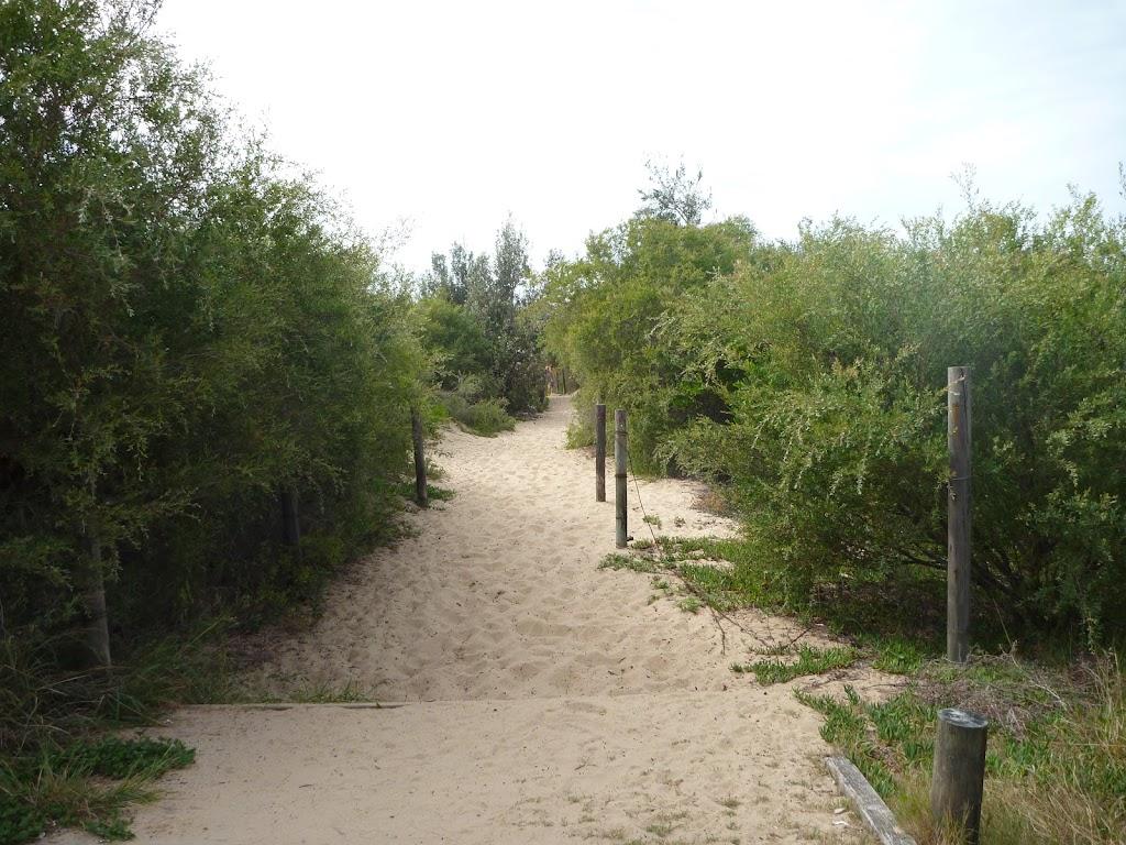 Sandy track towards Redhead Beach in Redhead